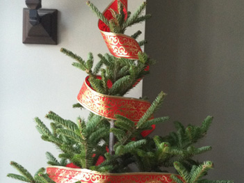 Kitchen_tree_Ribbon_2