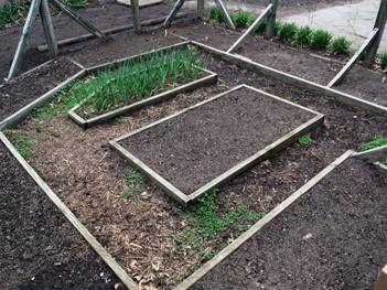 April_Garden_beds