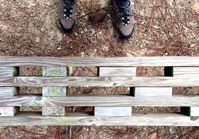 2x4_Bench_Top